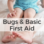 Bugs and Basic First Aid