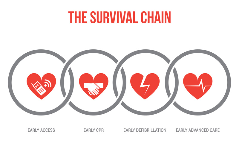 survival_chain